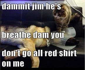 dammit jim he's breathe dam you don't go all red shirt on me