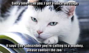 Every time I call you, I get a voice message   it says 'The subscriber you're calling is a monkey, please contact the zoo.'
