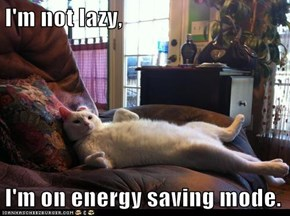 I'm not lazy,  I'm on energy saving mode.