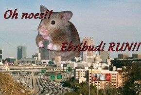 Oh noes!!                          Ebribudi RUN!!