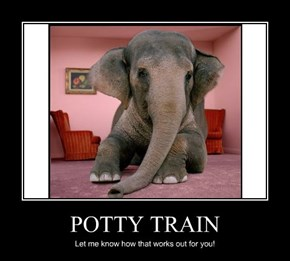 POTTY TRAIN