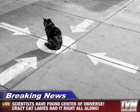 Breaking News - SCIENTISTS HAVE FOUND CENTER OF UNIVERSE! CRAZY CAT LADIES HAD IT RIGHT ALL ALONG!