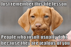 Just remember this life lesson  People who insult usually do it because they are jealous of you