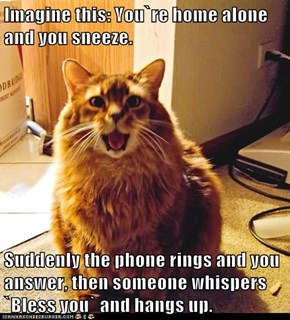 Imagine this: You`re home alone and you sneeze.  Suddenly the phone rings and you answer, then someone whispers `Bless you` and hangs up.