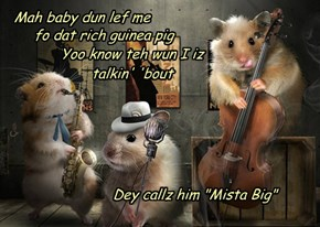 Hammy sings da Blues
