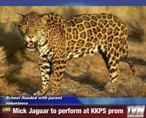 School flooded with parent volunteers  - Mick Jaguar to perform at KKPS prom