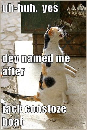 uh-huh.  yes dey named me after jack coostoze boat