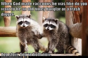 When God made raccoons he was like do you want to be an old timey burglar or a trash digger.  Too slow. You're both now.