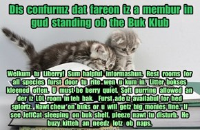 Offishul JeffCatsBookClub Memburship Kard for fareon