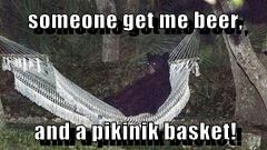 someone get me beer,  and a pikinik basket!