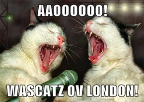AAOOOOOO!  WASCATZ OV LONDON!