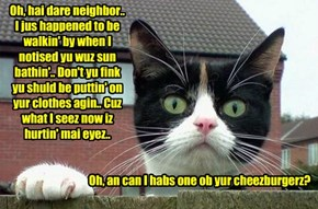 Yur first encounter with teh nex dor neighborhood kittie, Max Rude.. Max is Snookers' cuzzin an' Snookers iz urgin' hims to com to Kamp dis summer..