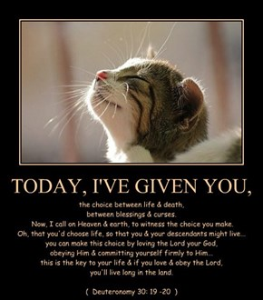 TODAY, I'VE GIVEN YOU,