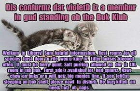 Offishul JeffCatsBookClub Memburship Kard for violetD