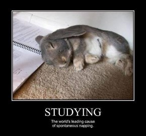 If Only I Looked That Cute Studying