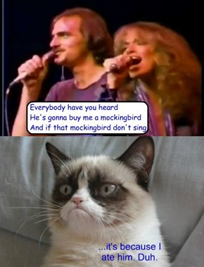 Carly Simon & James Taylor, meet Grumpy Cat