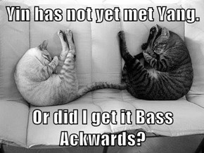 Yin has not yet met Yang.  Or did I get it Bass Ackwards?