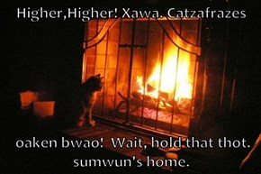 Higher,Higher! Xawa. Catzafrazes    oaken bwao!  Wait, hold that thot. sumwun's home.