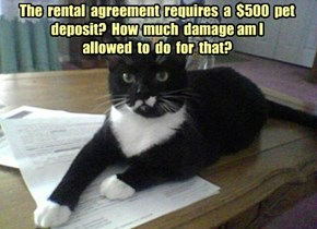 The  rental  agreement  requires  a  $500  pet deposit?  How  much  damage am I allowed  to  do  for  that?