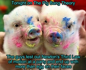 Tonight on The Pig Bang Theory
