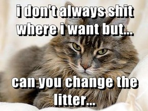 i don't always sh*t where i want but...  can you change the litter...
