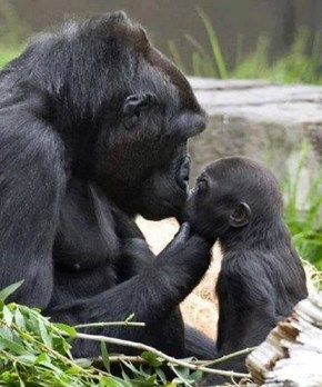Kiss from Mama