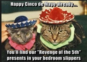 "Happy Cinco de Mayo already....  You'll find our ""Revenge of the 5th"" presents in your bedroom slippers"