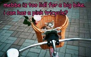 mebbe iz too lidl for a big bike.    i can has a pink tricycle?