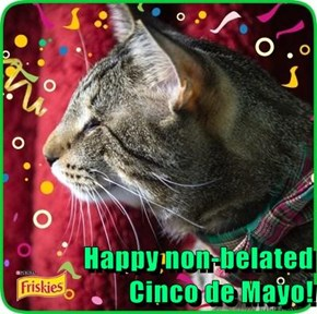 Happy non-belated                                                                           Cinco de Mayo!