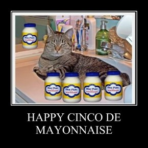 HAPPY CINCO DE MAYONNAISE