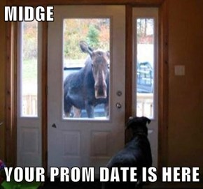 The Prom Photos Were Even More A-Moose-ing