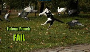 For that matter, Pigeon Punch FAIL