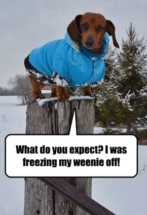 What do you expect? I was freezing my weenie off!