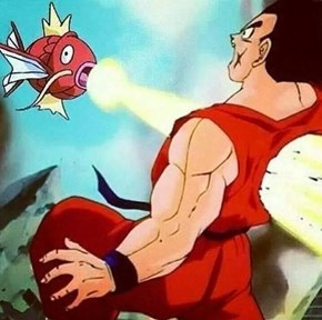 This is Normal for Yamcha