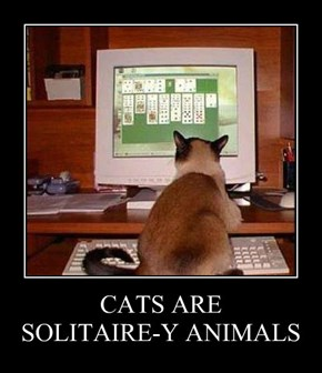 CATS ARE SOLITAIRE-Y ANIMALS