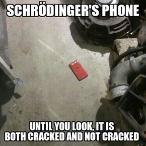 Please Don't Be Cracked, Please Don't Be Cracked, Please Don't Be Cracked!