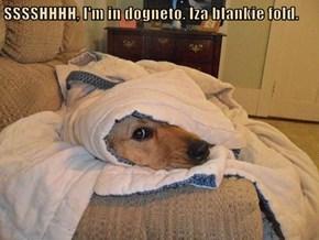 SSSSHHHH, I'm in dogneto. Iza blankie fold.