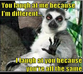 You laugh at me because             I'm different...  I laugh at you because                   you're all the same