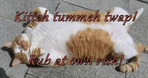 Kitteh tummeh twap!  Rub at own risk!