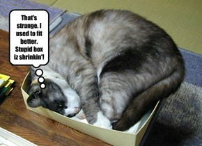 That's strange. I used to fit better. Stupid box iz shrinkin'!
