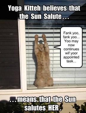 Yoga Kitteh's Sun Salute