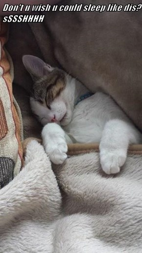 Don't u wish u could sleep like dis? sSSSHHHH