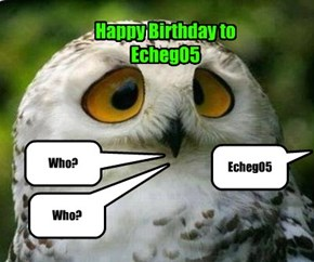 Not all Owls are wise enough to wish you a Happy Birthday!