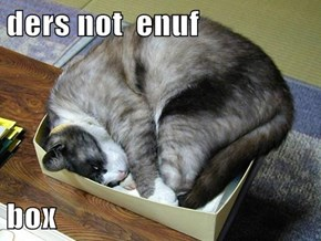 ders not  enuf  box