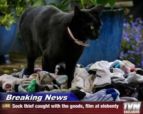 Breaking News - Sock thief caught with the goods, film at elebenty
