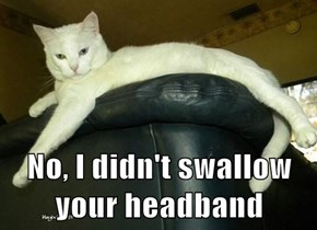 No, I didn't swallow your headband