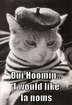 Oui Hoomin...                   I would like                  la noms