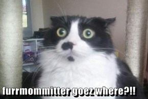 furrmommitter goez where?!!