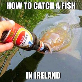 Ireland, Even the Fish Are Drunks