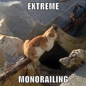 EXTREME  MONORAILING